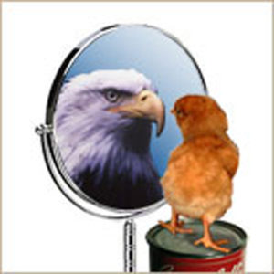 Photo of chicken seeing itself as an eagle in a mirror