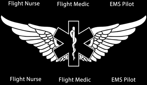 interview with a flight nurse essay Transcript of advanced practice nursing interview- week 4 worked as a critical care nurse for 22 yrs some experience as a flight rn some experience as or rn.