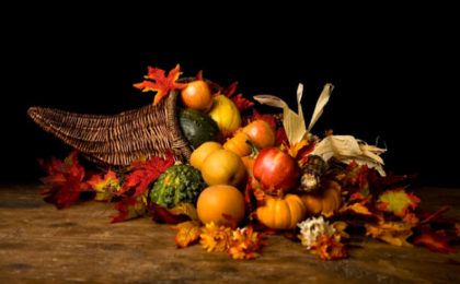 Happy Thanksgiving from EMS Flight Safety Network