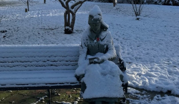 """Medics Respond to """"Woman Freezing On Bench"""" Call —Find Statue"""